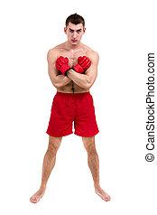 cheio, mostrando, algum, jovem, contra, isolado, comprimento, pugilista, fundo, retrato, macho branco, movimentos
