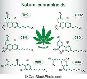 Chemical formulas of natural cannabinoids in cannabis : ...