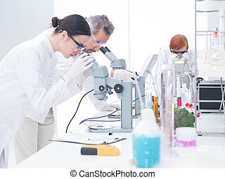 chemical laboratory analysis - side-view of two scientists...