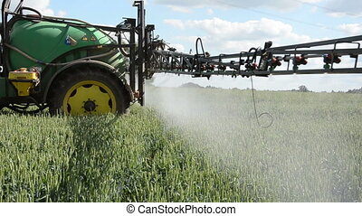 tractor spray fertilize field with chemicals for crop plants protection from weed and pest.
