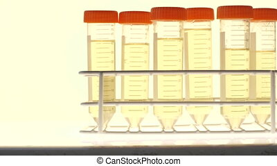 Chemical test tube - pan of test tubes in a holder