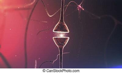 chemiczny, głowa, neurons., synapse., closeup.