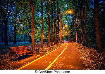 chemin, automne, crépuscule, parc