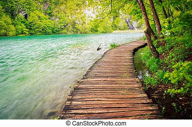 chemin bois, dans, parc national, dans, plitvice