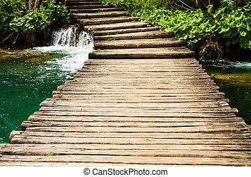 chemin bois, dans, plitvice, lacs, parc national, croatie
