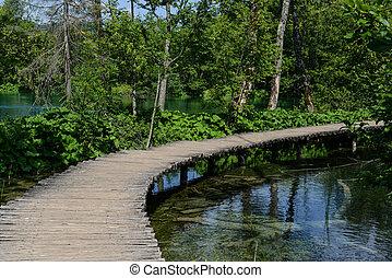 chemin bois, dans, plitvice, parc national, croatie