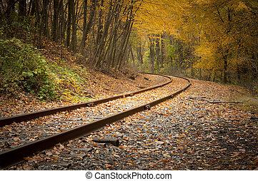 chemin fer traque, dans, automne