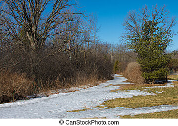 chemins, parc, pièces, thawed, printemps