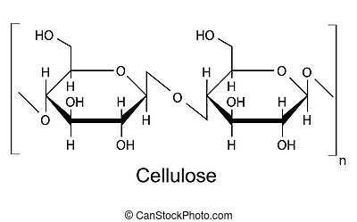 chemische , formel, zellulose