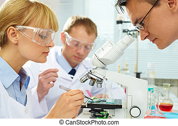 Chemists at work - Group of clinicians experimenting with...