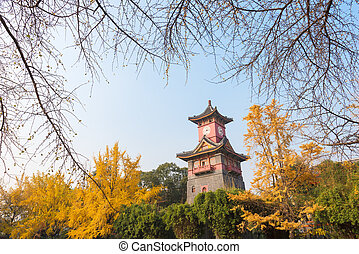 Chengdu clock tower with trees in autumn