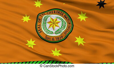 Cherokee Nation Indian Flag Closeup Seamless Loop - The...