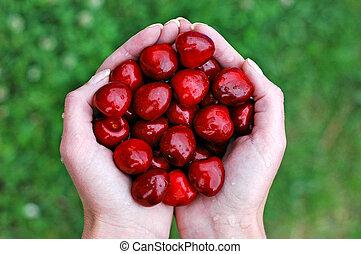 Cherries and hand 1