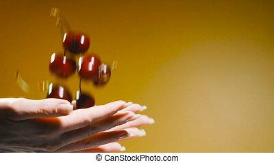 Cherries. Hands throw cherry