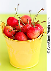 cherries in a yellow bucket on blue background