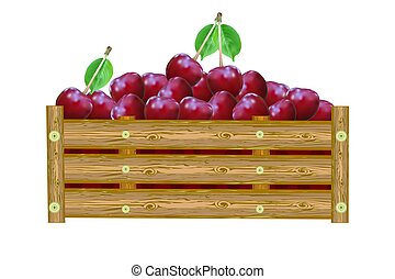 Cherries in box isolated on white background. Crate of juicy...