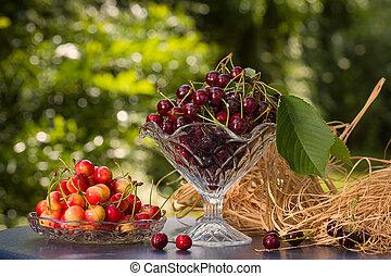 Cherries in the garden