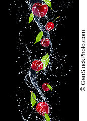 Cherries in water splash, isolated on black background