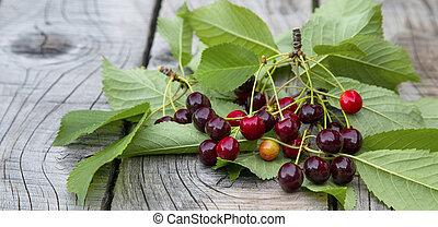 Cherries. Juicy summer fruits with leaves