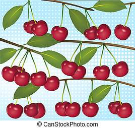 cherries on light blue background
