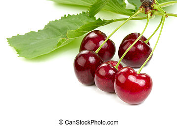 Cherries - The ripe cherries on a branch with leaves