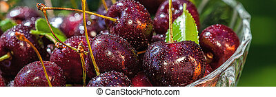 Cherries with drops of water