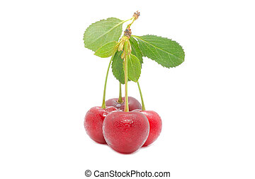 Cherries with Green Leaf Isolated on White Background