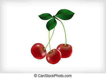 Cherries with leaves - Illustration of three cherries with...
