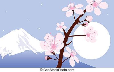 (cherry), 山, 月, ベクトル, フジ, ブランチ, sakura
