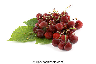 cherry and leaf on white background