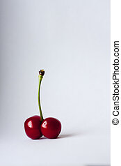 cherry and spine on a white background