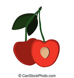 Cherry berries vector