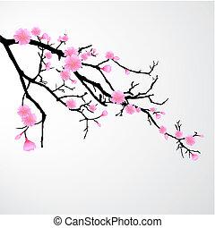 cherry blossem