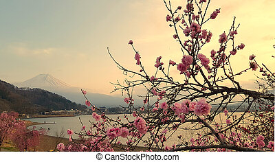 Cherry blossom and the Mount Fuji by the Ashi lake during a sunset, Hakone, Japan