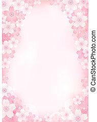 Cherry blossom background - Sakura Cherry blossom...
