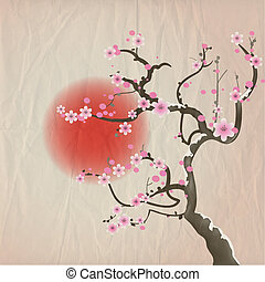 Cherry Blossom - Bough of a cherry blossom tree against red...