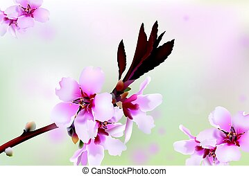 Cherry blossom branch. Spring delicate flowers background. Place for text. Vector illustration