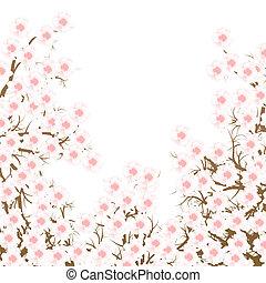 Cherry blossom branch vector background