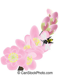 Cherry blossom branch with bees, spring composition