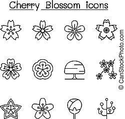 Cherry blossom, Japan sakura icon set in thin line style