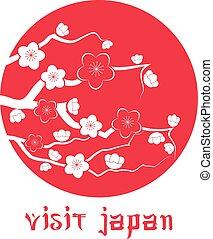 Cherry blossom. Sakura branch silhouette