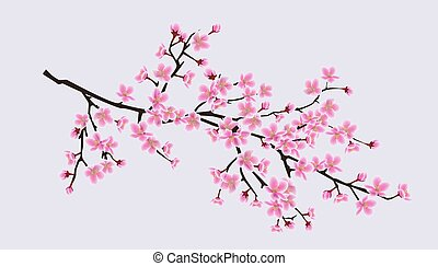 Cherry blossom sakura tree branch with realistic pink flowers