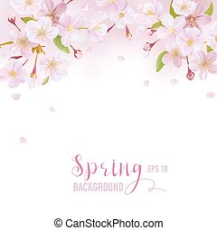 Cherry Blossom Spring Background - with place for your Text - in vector