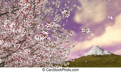 Cherry blossom tree falling petals and Mt Fuji 4K