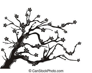 the silhouette of cherry blossom tree on white background