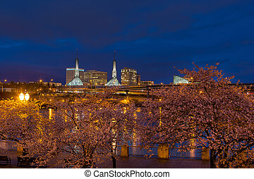 Cherry Blossom Trees at Portland Waterfront during Blue Hour