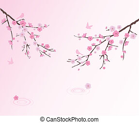 Cherry Blossom - vector cherry blossom with birds and water ...