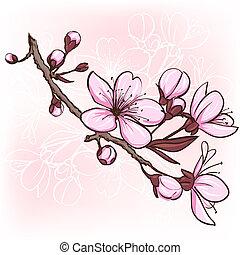 Cherry blossom. Decorative floral illustration of sakura...