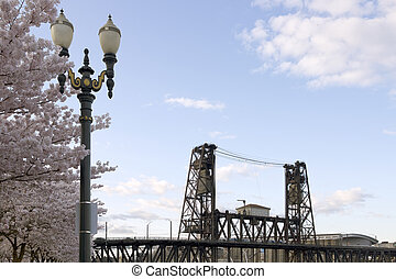 Cherry Blossoms Lamp Post And Steel Bridge