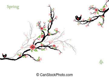 Cherry Blossoms Tree - Beautiful cherry blossoms tree...